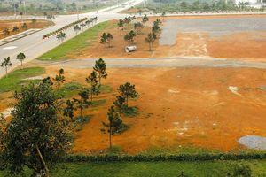 Sơn La: Phía sau con số 5/7 dự án sử dụng đất đấu thầu rộng rãi