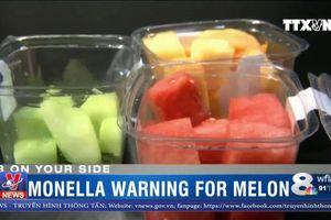 117 người Mỹ nhiễm khuẩn Salmonella do ăn hoa quả gọt sẵn