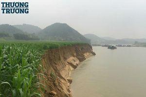 Tuyên Quang: Khai thác cát, nhiều diện tích đất nông nghiệp của người dân bị sạt lở