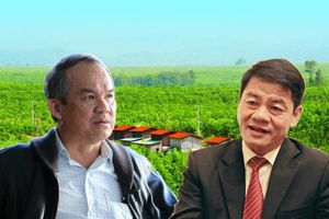 Tỷ phú Trần Bá Dương lấn sân mạnh sang nông nghiệp, bất động sản, logistics và thương mại