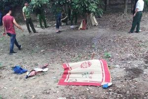 Hà Nội: Bác sát hại cháu 8 tuổi rồi giấu xác trong vườn