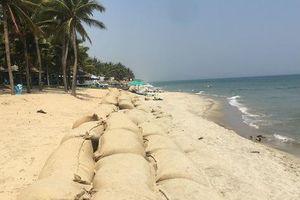 Phó Chủ tịch Quốc hội gợi ý phương án 'giải cứu' sạt lở bờ biển Cửa Đại