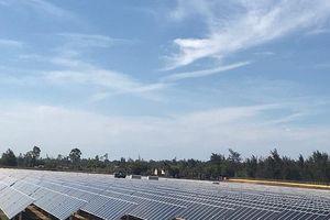 Quảng Ngãi: Đưa vào hoạt động nhà máy điện mặt trời đầu tiên được cấp phép tại Việt Nam
