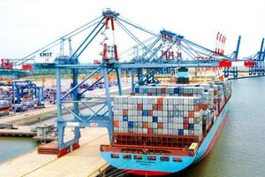 Báo cáo phản ánh cảng hoạt động 50% công suất, gây lãng phí đầu tư