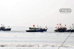 Quận Sơn Trà khai thác thế mạnh về phát triển thủy sản