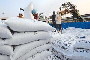 Xuất khẩu gạo sang Philippines thêm nhiều quy định mới