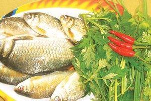 Những bài thuốc hay từ cá diếc bổ huyết, ích thận