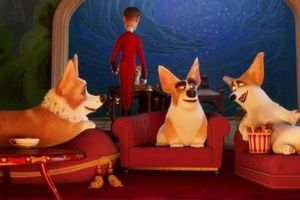 Đã là 'sen cuồng boss' thì không thể nào bỏ lỡ Corgi: Những Chú Chó Hoàng Gia