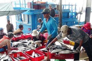 Thủy sản Việt Nam hồi hộp chờ phán quyết từ châu Âu