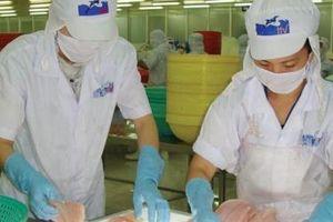 DOC công bố mức áp thuế cao đối với cá tra Việt Nam