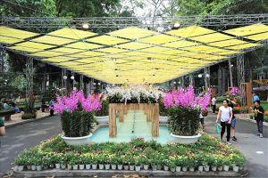 Hàng nghìn người dân Sài Gòn thưởng lãm hoa lan ở công viên Tao Đàn