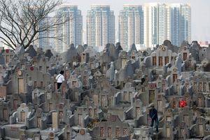 Hong Kong – nơi người chết chờ 4 năm để 'an nghỉ', 5 tỉ đồng một hốc đặt bình tro