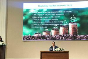 ĐHCD PAN: Cổ đông chất vấn về việc nhận vốn đầu tư nhưng không có kế hoạch tăng trưởng lợi nhuận 2019