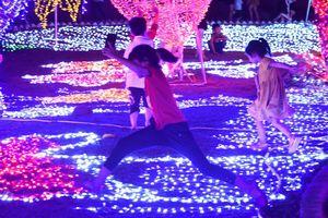 Cảnh dẫm đạp bóng đèn trang trí tại công viên ánh sáng vừa khai trương