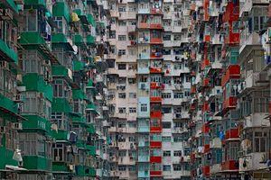 Chung cư như 'ma trận' ở Hong Kong trong mắt nhiếp ảnh gia vừa qua đời
