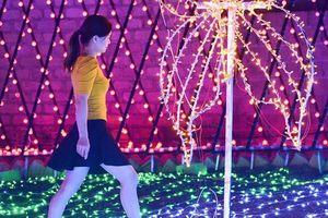 Cộng đồng mạng bức xúc vì khách phá hoại công viên Ánh sáng Mộc Châu