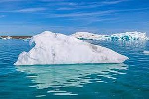 Đại dương có gần 200.000 quần thể virus