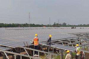 Điện mặt trời 'mở hết tốc lực' trước giờ G