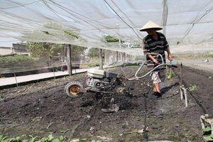 Vốn chính sách tạo dấu ấn trong nông thôn mới ở Đồng Nai
