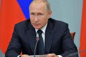 TT Putin: Moscow có thể cấp hộ chiếu Nga cho tất cả người dân Ukraine