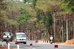 Gia Lai: Thanh tra việc xây dựng nhà ở, cây xăng trên đất rừng thông