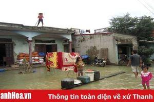 Đẩy nhanh tiến độ triển khai Dự án tiêu úng vùng 3 huyện Nông Cống