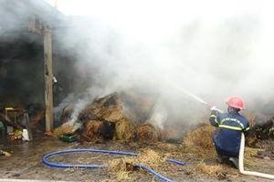 Cháy kho chứa rơm