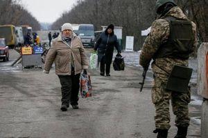 Nghị sĩ Đức đề nghị triển khai cảnh sát dân sự của LHQ tại Donbass