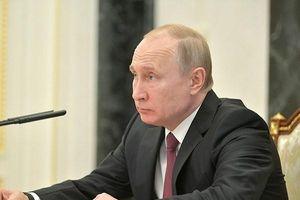 Tổng thống Putin: Việc ông Zelensky cấp quốc tịch Ukraine cho người Nga là ý tưởng tốt
