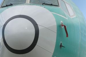 Con ốc nhỏ xíu này có thể là nguyên nhân thảm kịch rơi máy bay