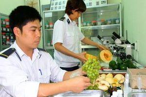 Việt Nam - Indonesia: Chuẩn bị kết nối chứng nhận kiểm dịch thực vật qua ASW