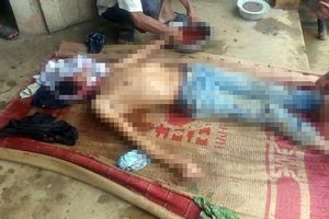 Phú Thọ: Bố đẻ đánh con trai say rượu đến tử vong