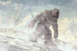 Quân đội Ấn Độ đưa ra bằng chứng về người tuyết bí ẩn trên dãy Himalaya