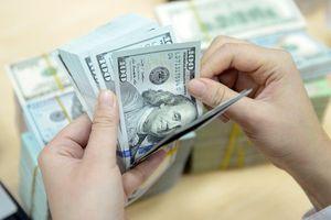 Giá USD trung tâm tăng 6 phiên liên tiếp
