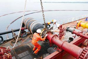 Cần tập trung nguồn lực để xây dựng và phát triển ngành Dầu khí