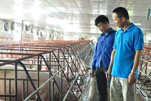 Hiệu quả phong trào thi đua lao động sản xuất của nông dân tỉnh Bắc Kạn