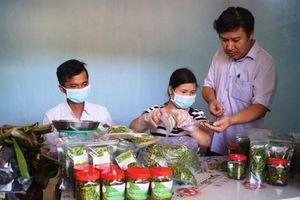 Sơn Hà: Nâng cao đời sống nhân dân từ OCOP