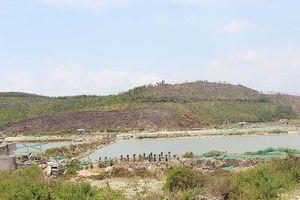 Được giao dịch đất trở lại tại Khu kinh tế Vân Phong