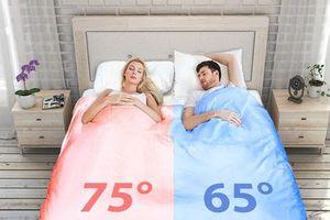 Những chiếc giường hàng chục nghìn USD với tính năng không tưởng