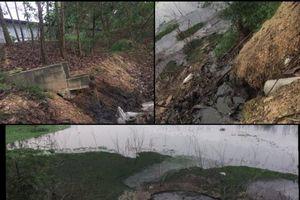 Huyện Ba Vì: Cần kiểm tra làm rõ trại lợn xả thải gây ô nhiễm môi trường hồ Suối Hai