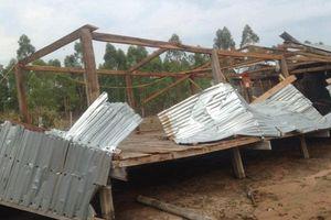 Mưa, lốc xoáy gây thiệt hại ở nhiều địa phương