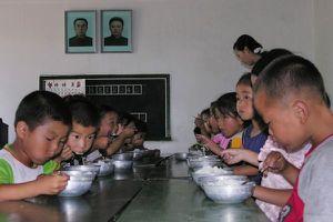 LHQ thông báo về tình trạng mất mùa, thiếu lương thực ở Triều Tiên