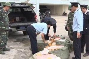 Lạng Sơn quyết liệt phòng, chống bệnh dịch tả lợn châu Phi