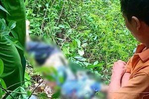 Hà Giang: Phát hiện nam thanh niên tử vong dưới vực núi Cấm Sơn