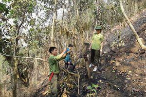 Điện Biên: Nhiều khó khăn trong phòng cháy, chữa cháy rừng