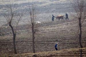 10 triệu người Triều Tiên đối mặt nạn đói giữa lúc căng thẳng hạt nhân chưa hạ nhiệt