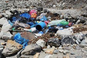 Dọn rác thải, phát hiện 4 thi thể vùi trong tuyết