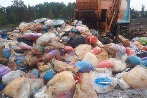 Bắt quả tang xe đổ trộm chất thải ở Bình Chánh