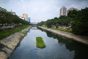 Giảm mùi siêu nhanh, sông Tô Lịch thực sự sẽ hết ô nhiễm?