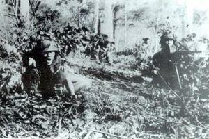Chiến trường Liên khu 5 'chia lửa' cùng Điện Biên Phủ